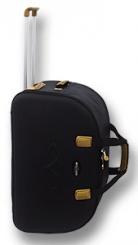 Питерские дорожные сумки на колесах tsv дорогие школьные рюкзаки gj wtyt